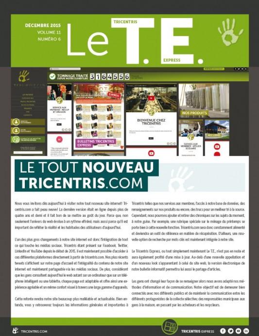 Printscreen_TE_Décembre2015