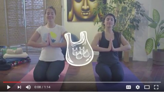 sacs-yogi